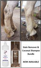 Stain Remover & Coconut Shampoo Bundle